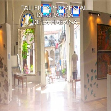 Todo InKluido: collateral expo to the XII Biennial of Havana